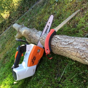 electric-chainsaw-handsaw-noise-pollution