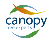 https://www.canopygroup.com.au/wp-content/uploads/2018/10/logo.png